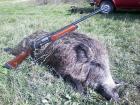 Перник снимка: за хората и събитията - лов на едър дивеч