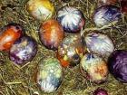 Боядисването на яйца на Великден не е окултна практика 04_1462029251