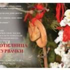 Отварят семейна работилница за сурвачки на 17 декември в Регионалния исторически музей  12_1481693556