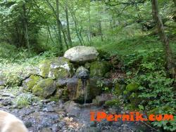 Туристи намериха скелет в Боснек 09_1379008666