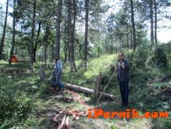 Бик пропадна в незаконен рудник в Перник 08_1407095784