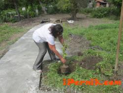 Кметът на Перник засади кедър на свещено място 09_1410762963