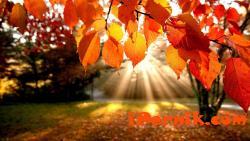 Есента настъпва, температурите падат 10_1412327393