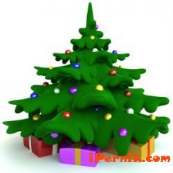Ще можем да засаждаме живи елхи на две места 12_1418283596