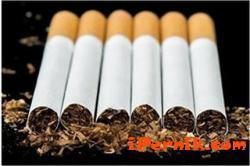 Митничари хванаха контрабандни цигари 12_1418636212