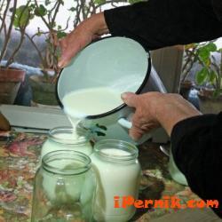 Отново правят киселото мляко в буркан 12_1419331986