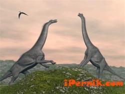 Динозаврите са се забавлявали с праисторически вариант на LSD 02_1423755068
