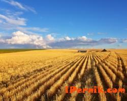 НССЗ ще проведе пет изнесени приемни в област Перник през април 04_1427952831