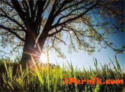 Слънцето ще грее и утре 05_1430652044