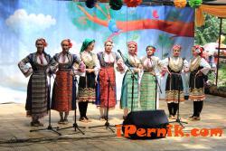 1000 изпълнителя се събраха на фолклорния фестивал в Дрен 06_1435555897