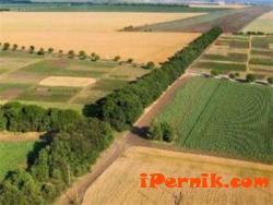 Публикуваха новите формуляри за предстоящите споразумения за ползване на земеделските земи 07_1436444747