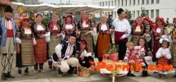 Пенсионери се събират на фолклорен фестивал в Земен 07_1437029129