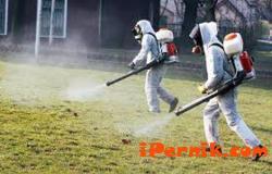 Днес ще обезпаразитяват помещения в полицията в Перник 08_1439532545