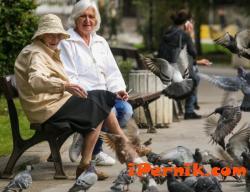 Догодина ще има бум на пенсионери 10_1444129651