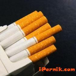 Полицаи иззеха контрабандни цигари 11_1448098960