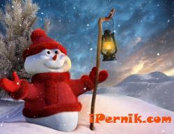 Предлагат няколко любопитни факти за Коледа 12_1451123915