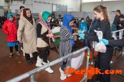 Екстрадирането от Германия на един бежанец струва по-скъпо от луксозна почивка 01_1452013586