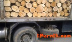 Хванаха два камиона с незаконна дървесина 02_1454421032
