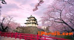 Япония се премества на изток 03_1457509822