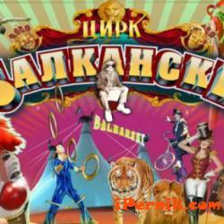 Цирк Балкански вече няма да дава безплатни билети на инвалиди 03_1459255184