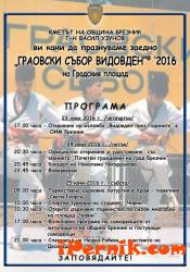 """Брезник """"патентова"""" Видовден 06_1466004549"""