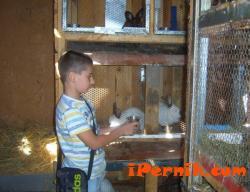 Предлагат да почиваме във ферма в Източните Родопи 08_1470199241