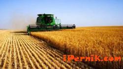 Цените на земеделската земя достигнаха връх 11_1478933645