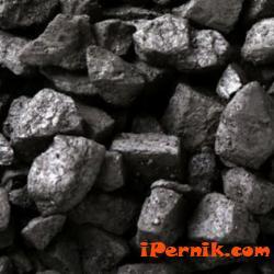 Перничани търсят въглища за отопление 12_1481960231
