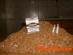 """Продавам фабрично нарязан и преработен тютюн """"ВИКТОРИ"""" 30  ЛВ. НА КИЛОГРАМ!"""